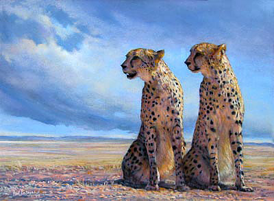 painting by paul bosman of pair ofcheetas