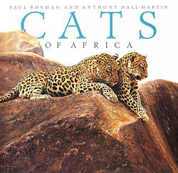 Cats of Africa by paul bosman