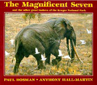 Paul Bosman Magnificent Seven Elephants